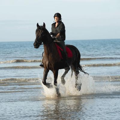 Balade, galop à cheval sur la plage de Deauville