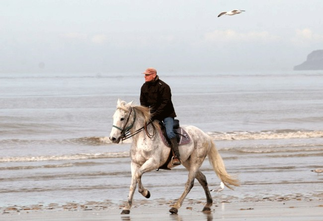 GALOP ON THE BEACH OF DEAUVILLE