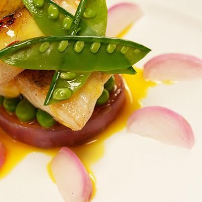 Gastronomy & Art of living