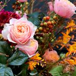 Maison Vertumne - Atelier de création floral